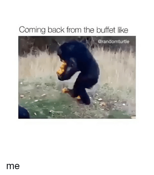 The Buffet: Coming back from the buffet like  @randomturtle me