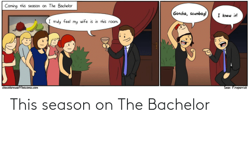 sean: Coming this season on The Bachelor  Gotcha, scumbag!  I knew it!  I truly feel my wife is in this room.  Sean Fitzpatrick  chocolatewafflescomic.com This season on The Bachelor