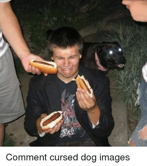 Most Hot Dog Eating