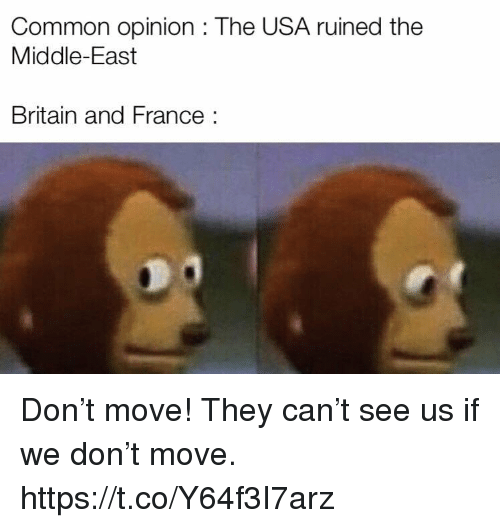 the middle east: Common opinion : The USA ruined the  Middle-East  Britain and France: Don't move! They can't see us if we don't move. https://t.co/Y64f3I7arz