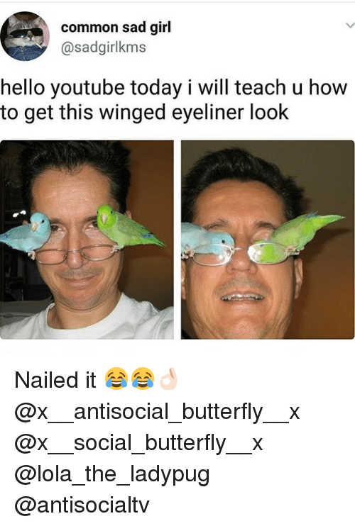 Hello, Memes, and youtube.com: common sad girl  @sadgirlkms  hello youtube today i will teach u how  to get this winged eyeliner look Nailed it 😂😂👌🏻 @x__antisocial_butterfly__x @x__social_butterfly__x @lola_the_ladypug @antisocialtv