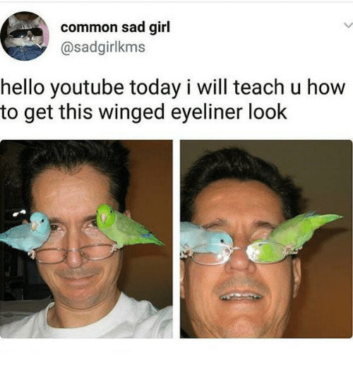 Funny, Hello, and youtube.com: common sad girl  @sadgirlkms  hello youtube today i will teach u how  to get this winged eyeliner look