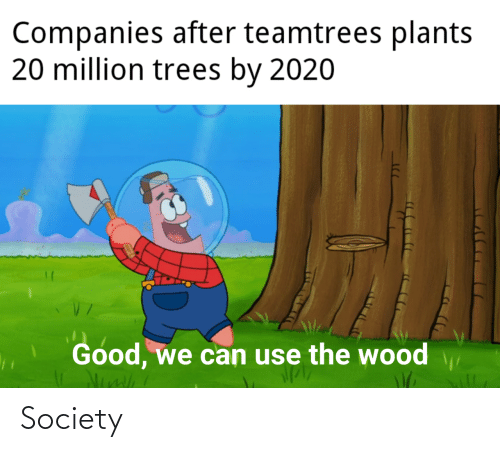 plants: Companies after teamtrees plants  20 million trees by 2020  Good, we can use the wood Society