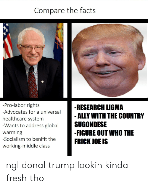 Donal Trump: Compare the facts  -Pro-labor rights  -RESEARCH LIGMA  ALLY WITH THE COUNTRY  SUGONDESE  -FIGURE OUT WHO THE  FRICK JOE IS  -Advocates for a universal  healthcare system  -Wants to address global  warming  -Socialism to benifit the  working-middle class ngl donal trump lookin kinda fresh tho