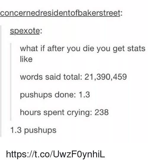 Crying, Total, and Words: concernedresidentofbakerstreet:  spexote  what if after you die you get stats  like  words said total: 21,390,459  pushups done: 1.3  hours spent crying: 238  1.3 pushups https://t.co/UwzF0ynhiL