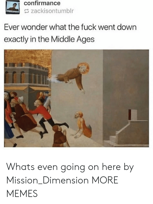 middle ages: confirmance  zackisontumblr  Ever wonder what the fuck went down  exactly in the Middle Ages Whats even going on here by Mission_Dimension MORE MEMES