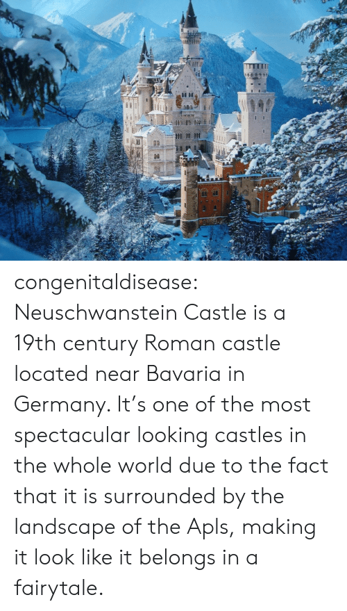 fairytale: congenitaldisease:  Neuschwanstein Castle is a 19th century Roman castle located near Bavaria in Germany. It's one of the most spectacular looking castles in the whole world due to the fact that it is surrounded by the landscape of the Apls, making it look like it belongs in a fairytale.