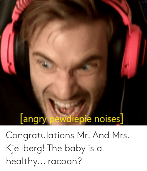 the baby: Congratulations Mr. And Mrs. Kjellberg! The baby is a healthy... racoon?