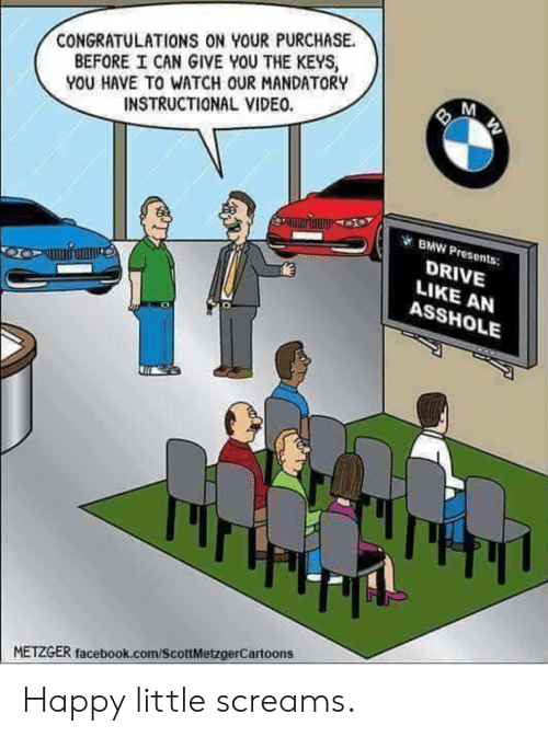 the keys: CONGRATULATIONS ON YOUR PURCHASE.  BEFORE I CAN GIVE YOU THE KEYS  YOU HAVE TO WATCH OUR MANDATORY  INSTRUCTIONAL VIDEO.  BMW Presents:  DRIVE  LIKE AN  ASSHOLE  METZGER facebook.com/ScottMetzgerCartoons Happy little screams.