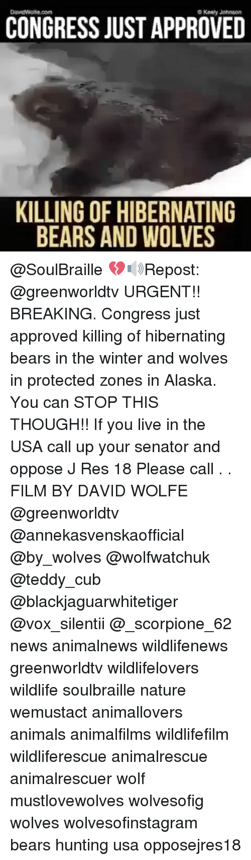congress just approved killing of hibernating bears and