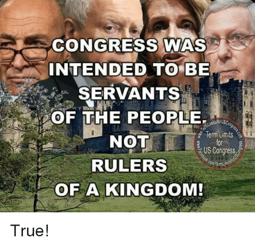Memes, True, and 🤖: CONGRESS WAS  INTENDED TO BE  SERVANTS  OF THE PEOPLE  NOT  RULERS  OF A KINGDOM!  Term:Limits .욜  for  US Congress  Com Term True!
