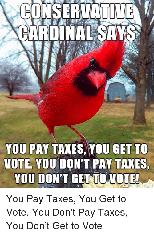 Taxes, Cardinal, and Don: CONSERVATIE  CARDINAL SAYS  YOU PAY TAKES YOU GET TO  VOTE, YOU DON'T PAY TAXES  YOU DONT GELUİOLOILE