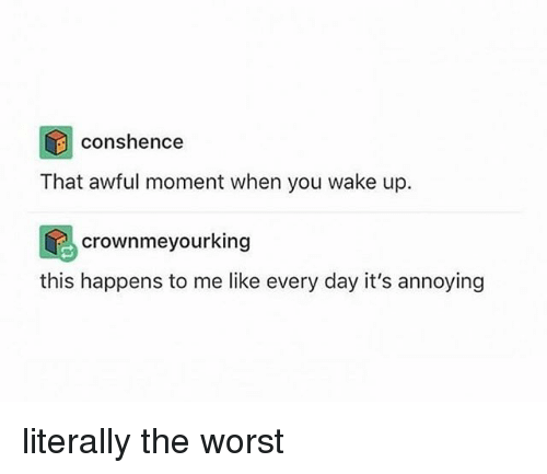 Memes, The Worst, and Annoying: conshence  That awful moment when you wake up.  crownmeyourking  this happens to me like every day it's annoying literally the worst
