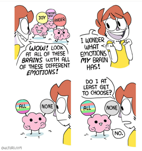 Brains, Wow, and Brain: CONTENT-  JOY MENT  ANGER  I WONDER  WHAT  EMOTIONS  MY BRAIN  HAS!  WOW! LOOK  AT ALL OF THESE  BRAINS WITH ALL  OF THESE DIFFERENT  EMOTIONS!  DO I AT  LEAST GET  TO CHOOSE?  ALL  NONE  ALL  NONE  NO.  OWLTURD.COM