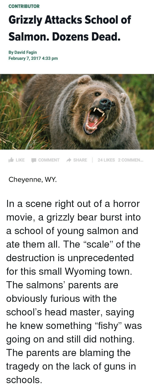 [Image: contributor-grizzly-attacks-school-of-sa...026756.png]