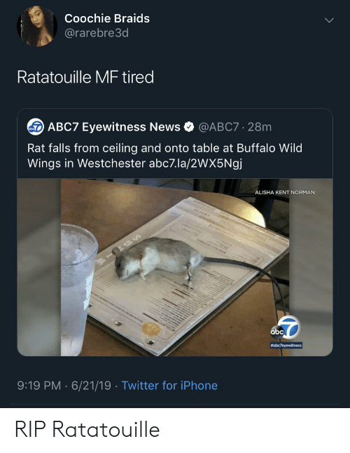 Ratatouille: Coochie Braids  @rarebre3d  Ratatouille MF tired  ABC7 Eyewitness News  @ABC7 28m  Rat falls from ceiling and onto table at Buffalo Wild  Wings in Westchester abc7.la/2wX5Ngj  ALISHA KENT NORMAN  abc  #abc7eyewitness  9:19 PM 6/21/19 Twitter for iPhone  . RIP Ratatouille