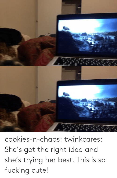Cookies: cookies-n-chaos: twinkcares: She's got the right idea and she's trying her best.    This is so fucking cute!