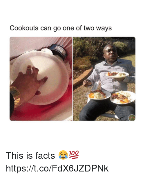 Facts, Can, and One: Cookouts can go one of two ways This is facts 😂💯 https://t.co/FdX6JZDPNk