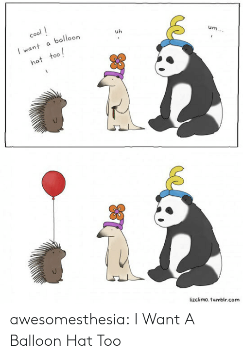 balloon: cool  balloon  uh  I want  um...  hat too  lizclimo.tumblr.com awesomesthesia:  I Want A Balloon Hat Too