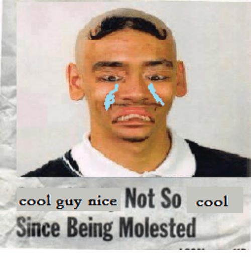Cool, Dank Memes, and Nice: cool guy nice  Not So  cool  Since Being Molested