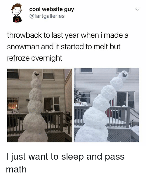 Memes, Cool, and Math: cool website guy  @fartgalleries  throwback to last year when i made a  snowman and it started to melt but  refroze overnight I just want to sleep and pass math
