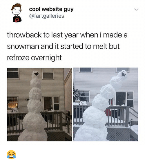 Memes, Cool, and 🤖: cool website guy  @fartgalleries  throwback to last year when i made a  snowman and it started to melt but  refroze overnight 😂