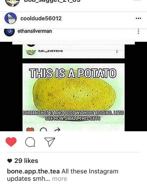 Like Bone App: cooldude 56012  ethansilverman  THIS ISA POTATO  SCR8BNSHOTITANDOPOSTAWIMHOUT 8OMINS  MS  SEE HOW SMALL THISRGETS  29 likes  bone app the tea All these Instagram  updates smh... more