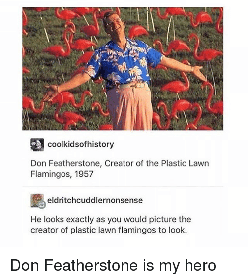 Memes, My Hero, and 🤖: coolkidsofhistory  Don Featherstone, Creator of the Plastic Lawn  Flamingos, 1957  eldritchcuddlernonsense  He looks exactly as you would picture the  creator of plastic lawn flamingos to look. Don Featherstone is my hero