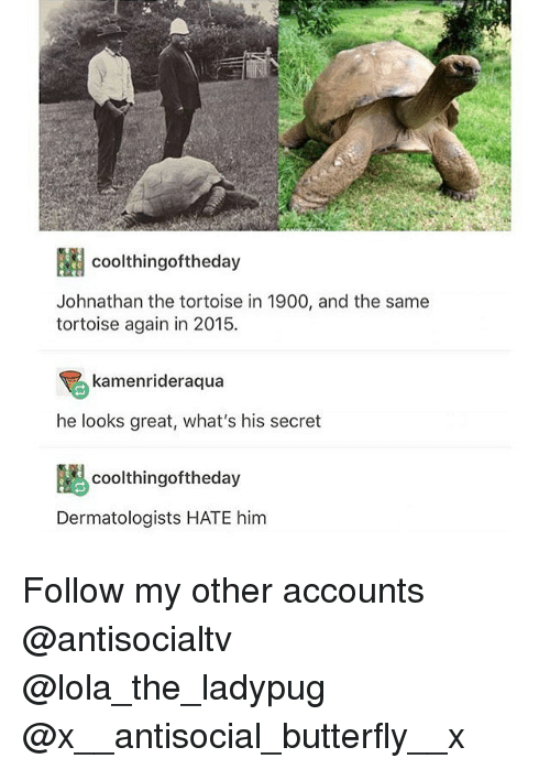 secrete: coolthingoftheday  Johnathan the tortoise in 1900, and the same  tortoise again in 2015  kamenrideraqua  he looks great, what's his secret  coolthingoftheday  Dermatologists HATE him Follow my other accounts @antisocialtv @lola_the_ladypug @x__antisocial_butterfly__x