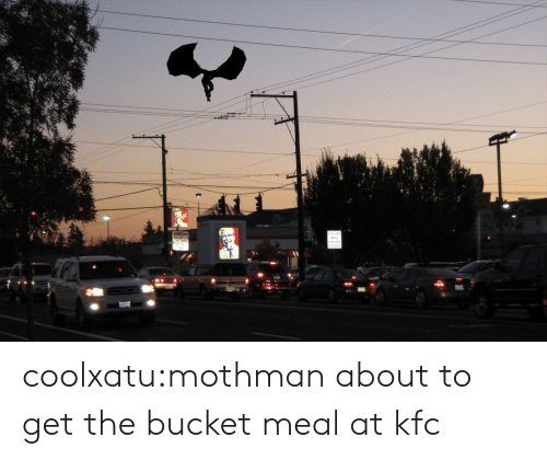 mothman: coolxatu:mothman about to get the bucket meal at kfc