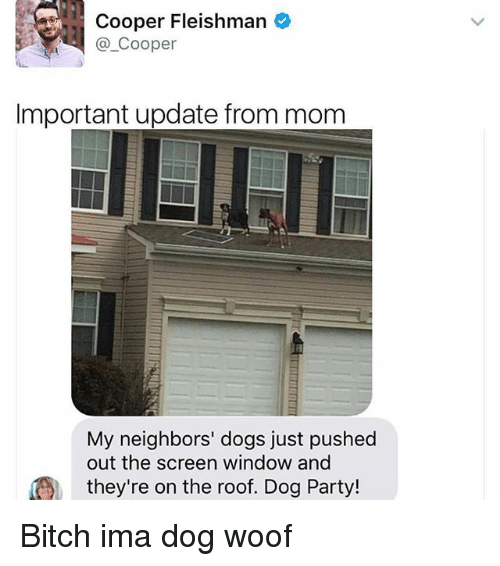 Coopers: Cooper Fleishman  Cooper  Important update from mom  My neighbors' dogs just pushed  out the screen window and  they're on the roof. Dog Party! Bitch ima dog woof