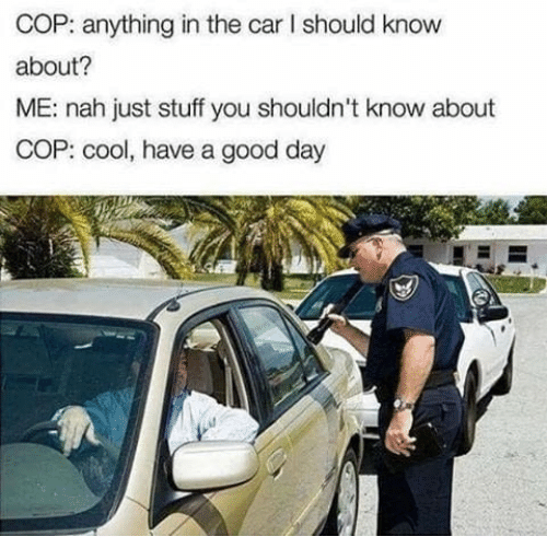 Cars, Cool, and Good: COP: anything in the car I should know  about?  ME: nah just stuff you shouldn't know about  COP: cool, have a good day