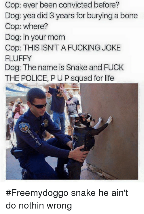 Dogs, Fuck the Police, and Fucking: Cop: ever been convicted before?  Dog: yea did 3 years for burying a bone  Cop: where?  Dog: in your mom  Cop: THIS ISN'T A FUCKING JOKE  FLUFFY  Dog: The name is Snake and FUCK  THE POLICE, PUP squad for life #Freemydoggo snake he ain't do nothin wrong