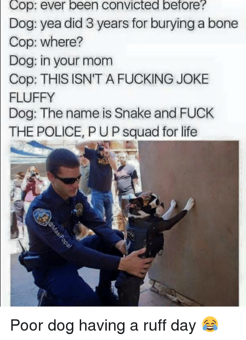 Bones, Dogs, and Fuck the Police: Cop: ever been convicted before?  Dog: yea did 3 years for burying a bone  Cop: where?  Dog: in your mom  Cop: THIS ISN'T A FUCKING JOKE  FLUFFY  Dog: The name is Snake and FUCK  THE POLICE, PUP squad for life Poor dog having a ruff day 😂