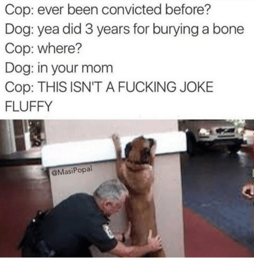 Fucking Joke: Cop: ever been convicted before?  Dog: yea did 3 years for burying a bone  Cop: where?  Dog: in your mom  Cop: THIS ISN'T A FUCKING JOKE  FLUFFY  @MasiPopal