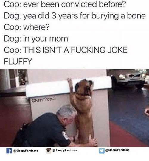 Bones, Dogs, and Fucking: Cop: ever been convicted before?  Dog: yea did 3 years for burying a bone  Cop: where?  Dog: in your mom  Cop: THIS ISN'T A FUCKING JOKE  FLUFFY  @Masi Popal  @sleepy panda. me O @Sleepy Panda.me  @sleepy Pandame