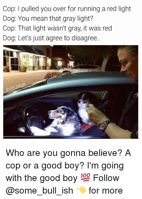 Memes, Good, and Mean: Cop: l pulled you over for running a red light  Dog: You mean that gray light?  Cop: That light wasn't gray, it was red  Dog: Let's just agree to disagree.. Who are you gonna believe? A cop or a good boy? I'm going with the good boy 💯 Follow @some_bull_ish 👈 for more
