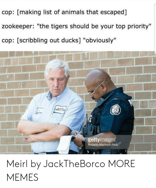 "Roberto: cop: [making list of animals that escaped]  zookeeper: ""the tigers should be your top priority""  cop: [scribbling out ducks] ""obviously""  gettyimages  Roberto Machado Noa Meirl by JackTheBorco MORE MEMES"