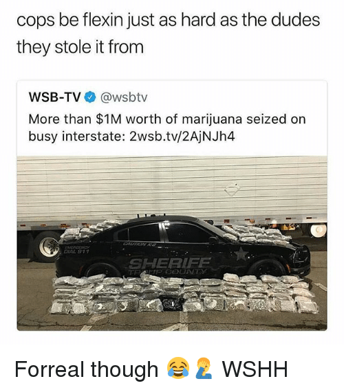 Memes, Wshh, and Marijuana: cops be flexin just as hard as the dudes  they stole it from  WSB-TV @wsbtv  More than $1M worth of marijuana seized on  busy interstate: 2wsb.tv/2AjNJh4  DIAL 911  SHERIFF Forreal though 😂🤦‍♂️ WSHH