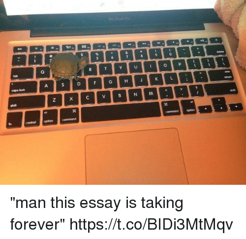 "Control, Forever, and Girl Memes: cops lock  control optioncommand  commondopticrn ""man this essay is taking forever"" https://t.co/BIDi3MtMqv"