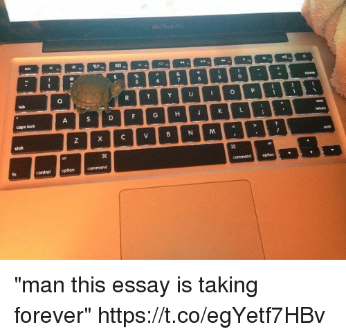 "Control, Forever, and Girl Memes: cops lock  control optioncommand  commondopticrn ""man this essay is taking forever"" https://t.co/egYetf7HBv"
