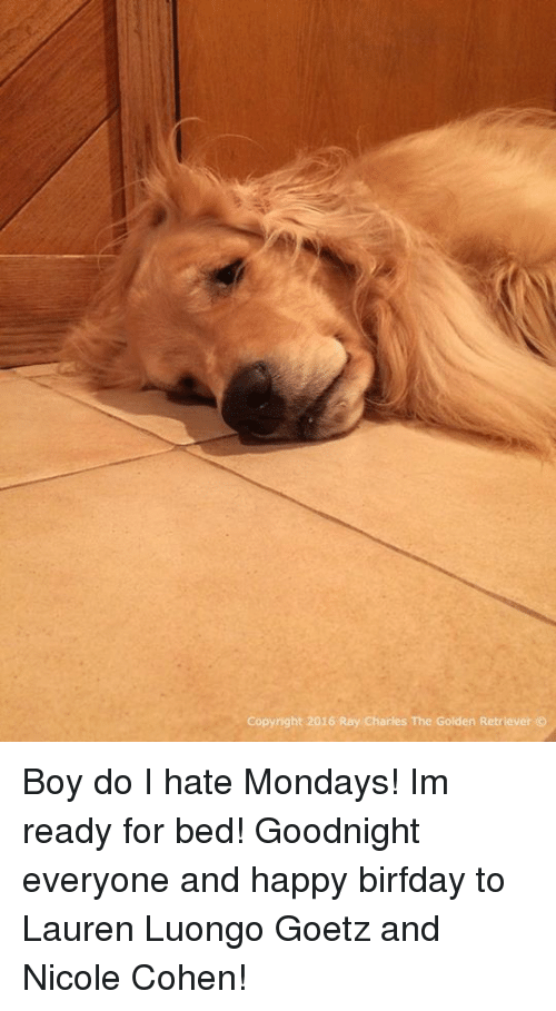 Birfday: Copyright 2016 Ray Charles The Golden Retriever Boy do I hate Mondays! Im ready for bed! Goodnight everyone and happy birfday to Lauren Luongo Goetz and Nicole Cohen!