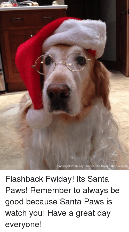 Memes, Golden Retriever, and Ray Charles: Copyright 2016 Ray Charles The Golden Retriever Flashback Fwiday! Its Santa Paws! Remember to always be good because Santa Paws is watch you! Have a great day everyone!