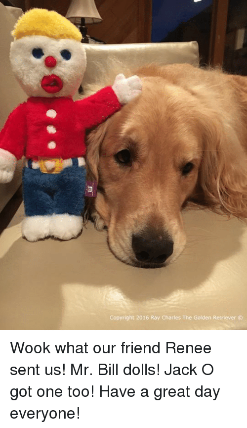 memes: Copyright 2016 Ray Charles The Golden Retriever Wook what our friend Renee sent us! Mr. Bill dolls! Jack O got one too! Have a great day everyone!