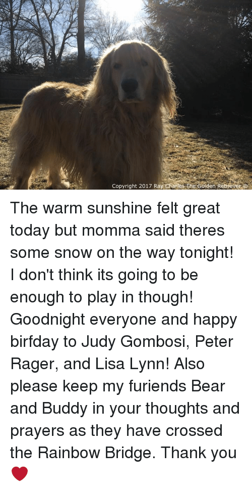 Birfday: Copyright 2017 Ray Charles The Golden Rethiever The warm sunshine felt great today but momma said theres some snow on the way tonight! I don't think its going to be enough to play in though! Goodnight everyone and happy birfday to Judy Gombosi, Peter Rager, and Lisa Lynn! Also please keep my furiends Bear and Buddy in your thoughts and prayers as they have crossed the Rainbow Bridge. Thank you❤