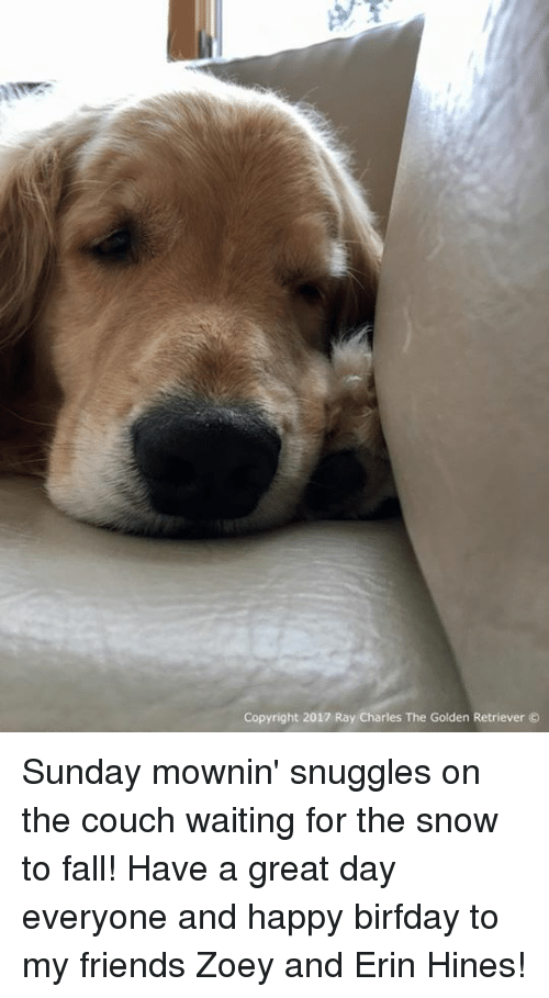 Birfday: Copyright 2017 Ray Charles The Golden Retriever Sunday mownin' snuggles on the couch waiting for the snow to fall! Have a great day everyone and happy birfday to my friends Zoey and Erin Hines!