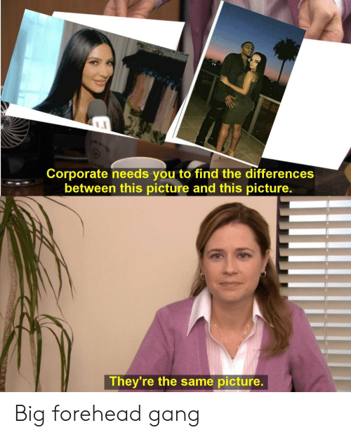 big forehead: Corporate needs you to find the differences  between this picture and this picture.  They're the same picture. Big forehead gang