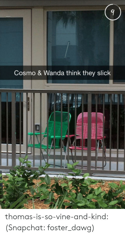 dawg: Cosmo & Wanda think they slick thomas-is-so-vine-and-kind: (Snapchat: foster_dawg)