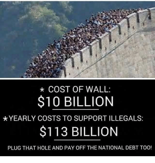 COST OF WALL $10 BILLION *YEARLY COSTS TO SUPPORTILLEGALS ...