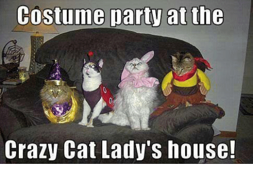crazy cats: Costume party at the  Crazy Cat Lady's house!
